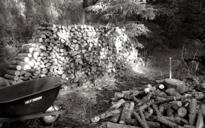Haiku Chopping Wood