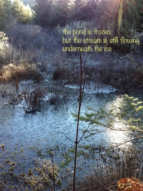 Frozen Pond Haiku